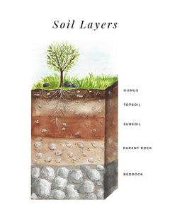 Soil Layers - Printable Poster