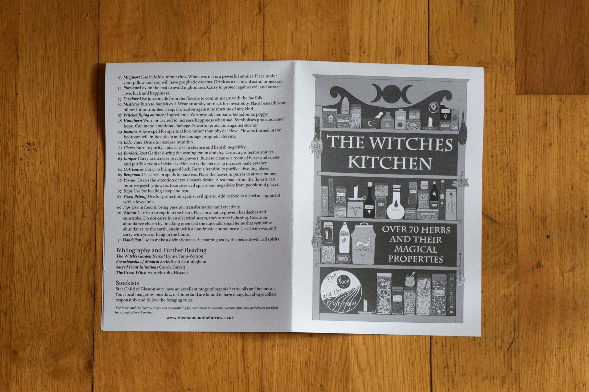 Witches kitchen art print and zine