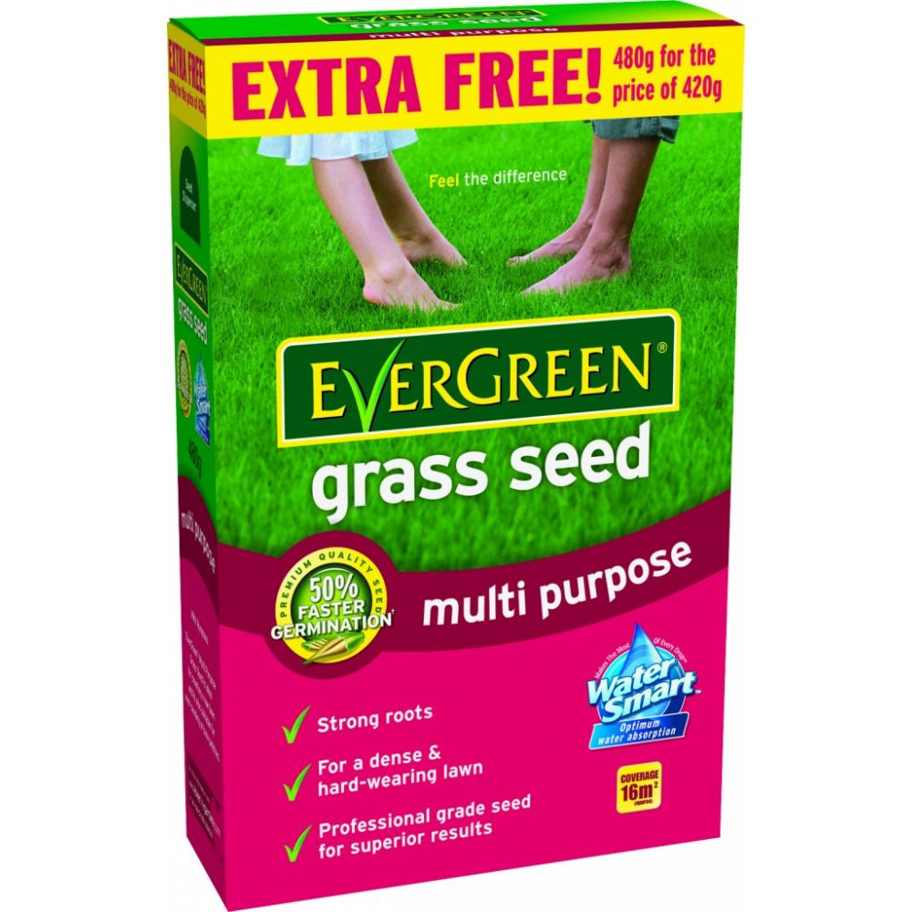 Evergreen Multi Purpose Lawn Seed - Special Offer