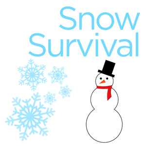 Snow Survival