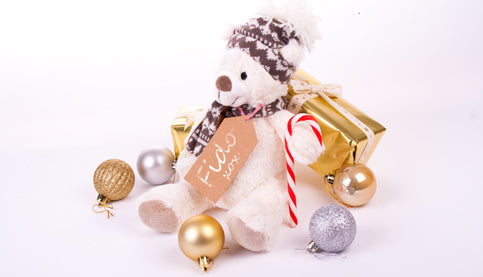 Pet Gifts This Christmas