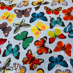 Blue, Orange, Green, Yellow  & Purple - Pattern : Butterflies