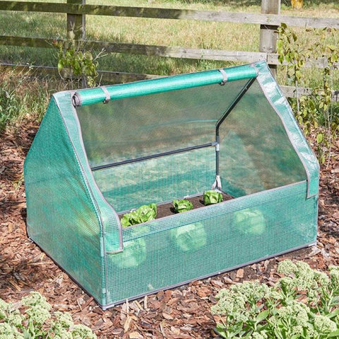 Raised Bed GroZone GroCloche