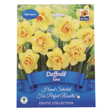 Spring Exotic Collection Bulbs