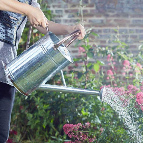 Smart Garden Galvanised Steel 9L Watering Can