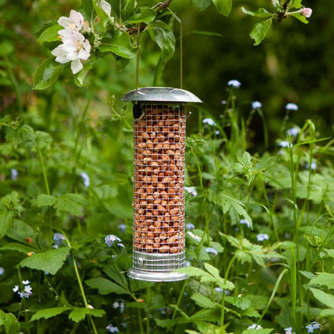 Wild Bird Peanut Feeder