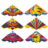 Deluxe Kite With String All Design