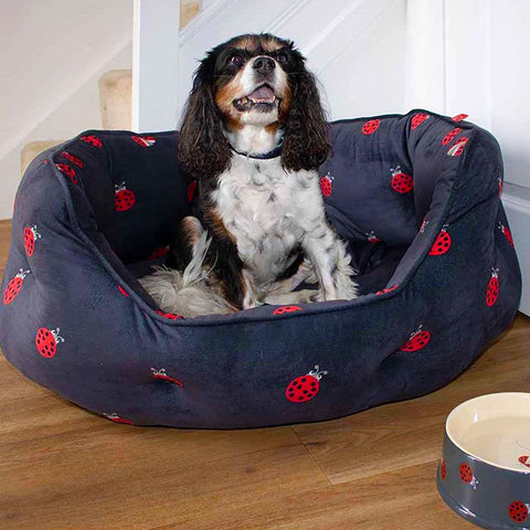 Oval Dog Beds Ladybird Design
