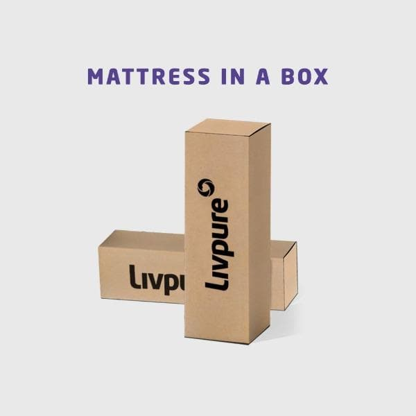 5 Inch Reversible Foam Mattress Box