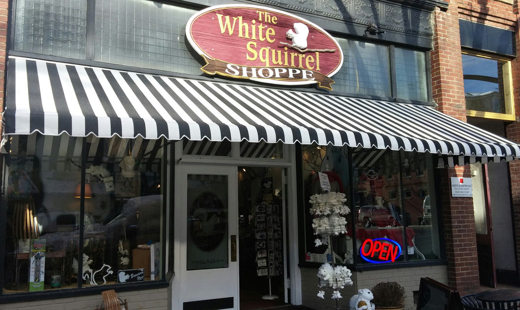 WHITE SQUIRREL AWNING IS NOW UP