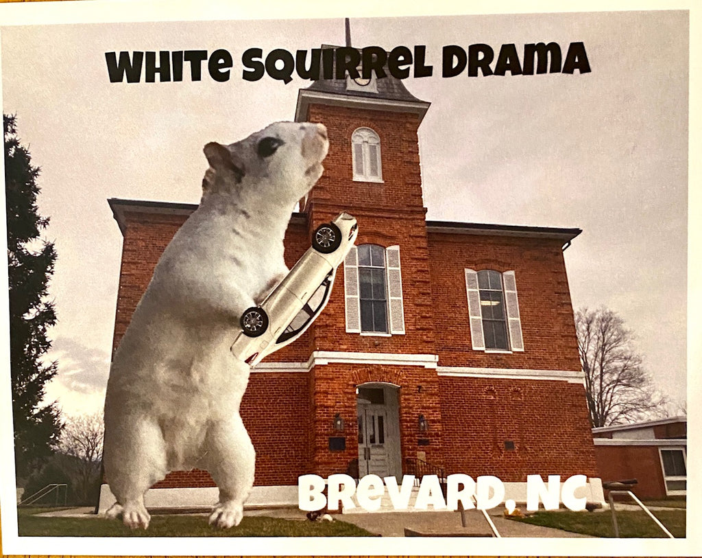 White Squirrel Drama post card!!!