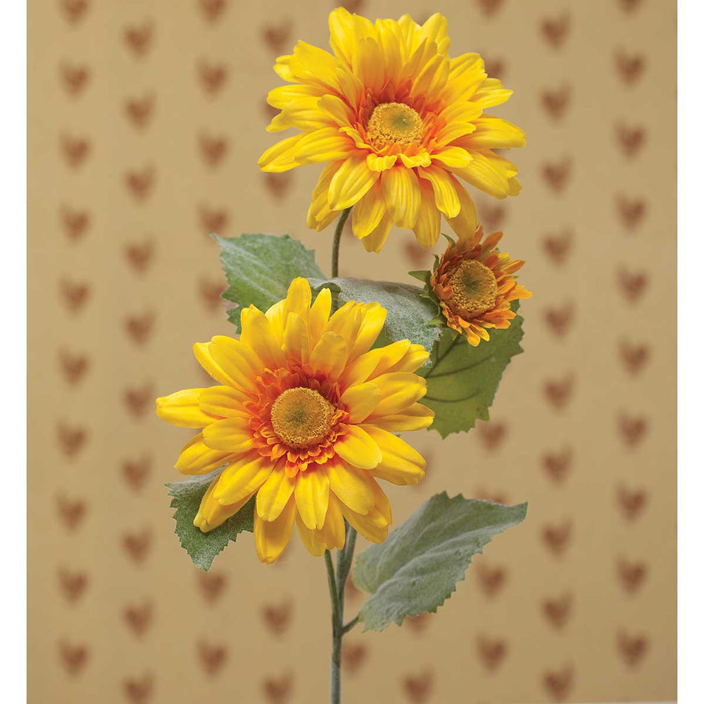 Stem - Gerber Daisy in Yellow or White