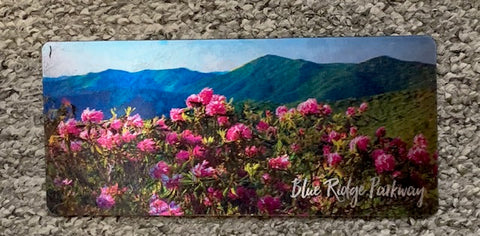 J. Scott Graham - 3D Panoramic Magnet of BRP - Rhodendrons
