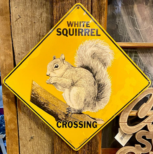 "White Squirrel Crossing Sign - 12"" x 12"" Metal"