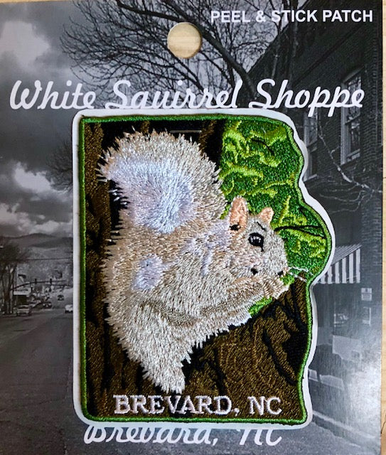 Patches - White Squirrel On a Limb