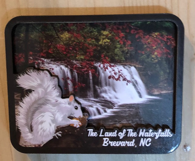 Magnet - Land of the Waterfalls 3D Wooden Magnet with our Little White Squirrel