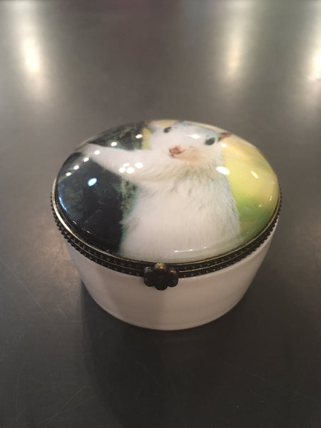 Home Accessory - White squirrel ring or trinket box