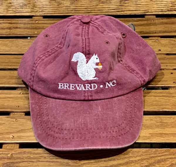 Baseball Hat-Embroidered White Squirrel with Brevard, NC #