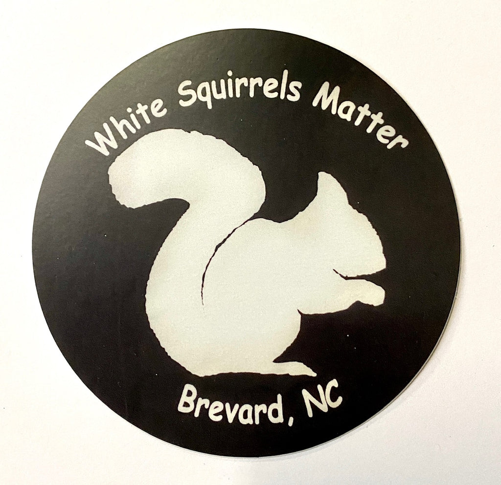 "White Squirrel Decal/Sticker - Vinyl - ""White Squirrels Matter"""