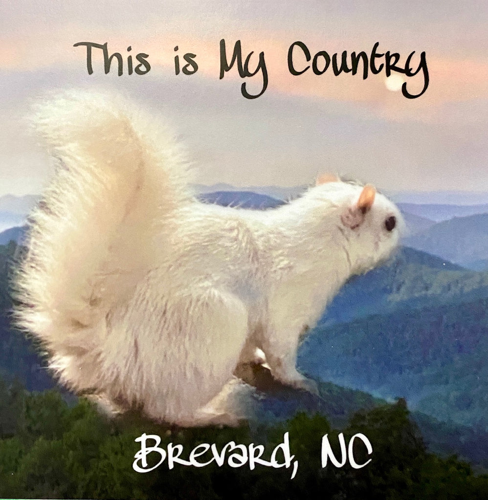 "Decal/Sticker - Vinyl - White Squirrel ""This is My Country"""