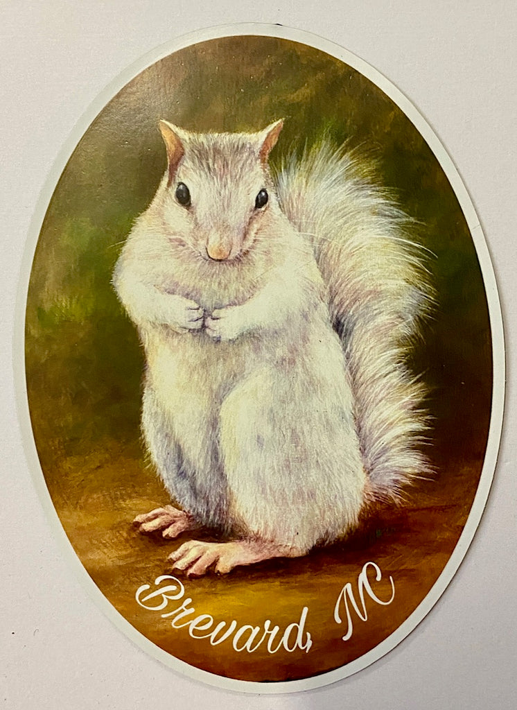 "Magnet - For Car or Fridge - White Squirrel Art Print by Lydia Steeves with ""Brevard, NC"""