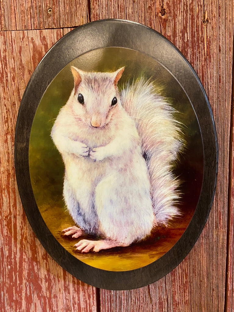 "Wall Plaque - White Squirrel Art Print by Lydia Steeves - 14"" x 10"" Wood Oval"