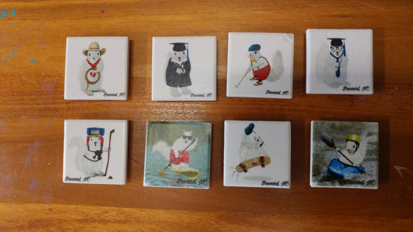 Magnets - White Squirrel Sports & Hobby Enthusiasts