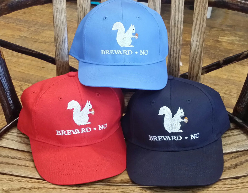 5ea26a777e3 Baseball Hat- Youth with Embroidered White Squirrel with Brevard
