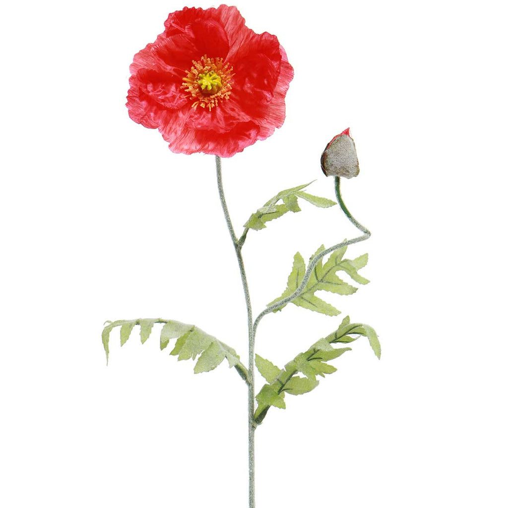 Stem - Poppy -Elegant Ruffled Blossom in Orange or Red