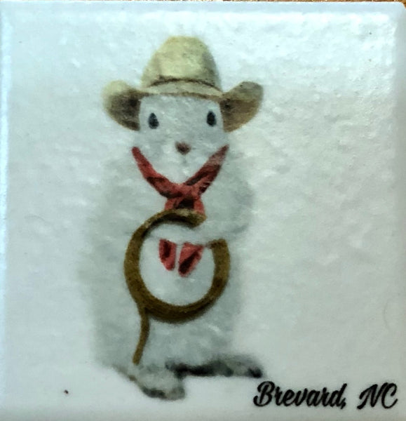 Coasters - White Squirrel Sport and Hobby Enthusiasts