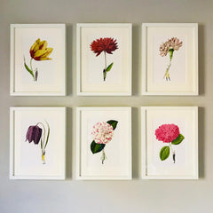 Open Edition Prints