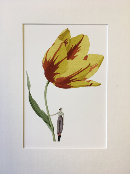 "Tulip ""In Bloom"" Mounted Print"