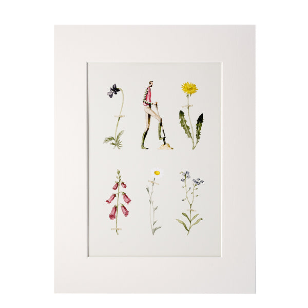 Wildflowers Mounted Print - Gentleman Gardener