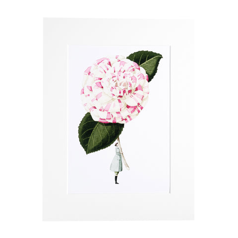 "Camellia ""In Bloom"" Mounted Print"