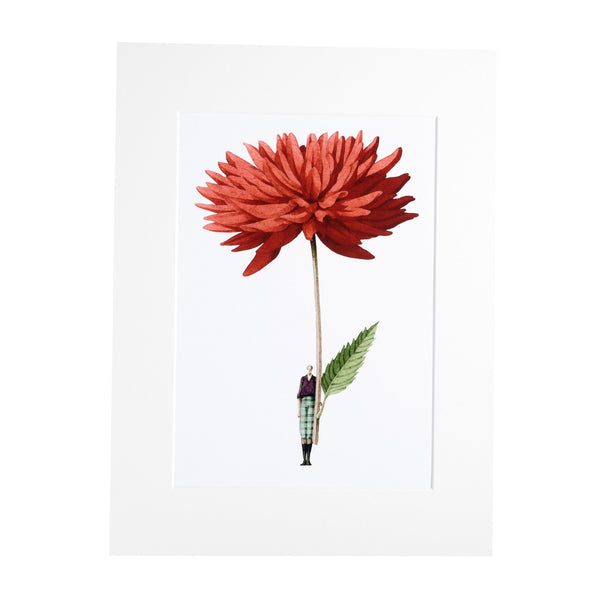 "Dahlia""In Bloom"" Mounted Print"