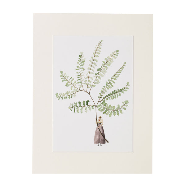 Fabulous Ferns - Fern 2 Print