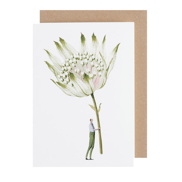 Greetings Card NEW - Astrantia