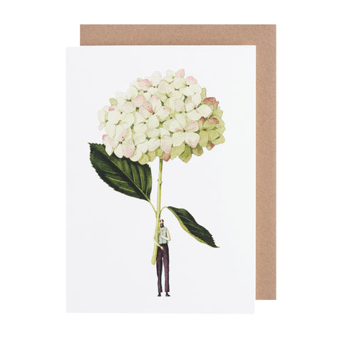 Greetings Card - Green Hydrangea