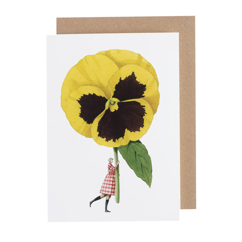 Greetings Card - Pansy