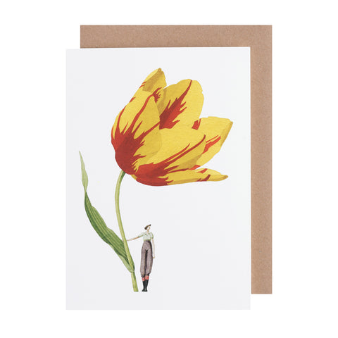Greetings Card - Tulip