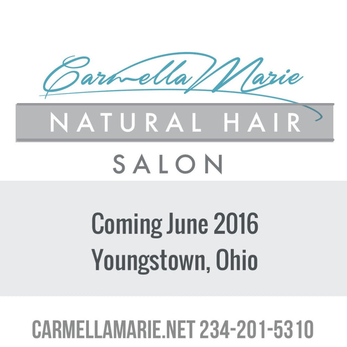 Youngstown's First Natural Hair Salon by Carmella Marie