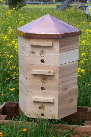 Hex Hive from thanknature.com