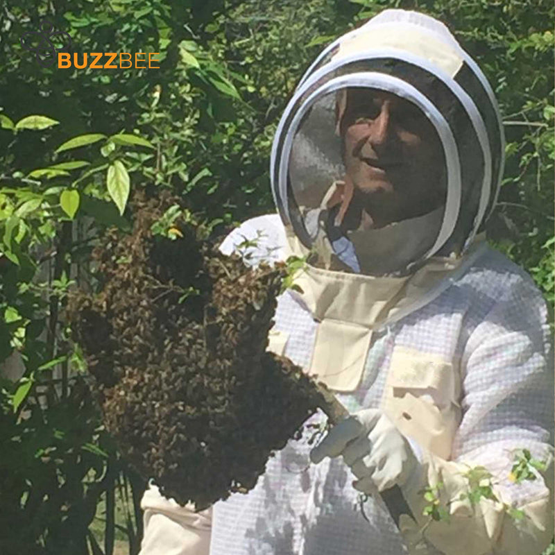 Bee Swarm and Nest Removal Service
