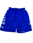 Tracy Hector Florida Gulf Coast Team Issued Practice Shorts (Size L)