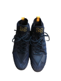 Tyrone Wheatley Jr. Michigan Jordan Player Exclusive Game-Worn Cleats (Size 16)