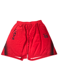 Jake DesJardins Arizona Basketball Team Issued Practice Shorts (Size XL)