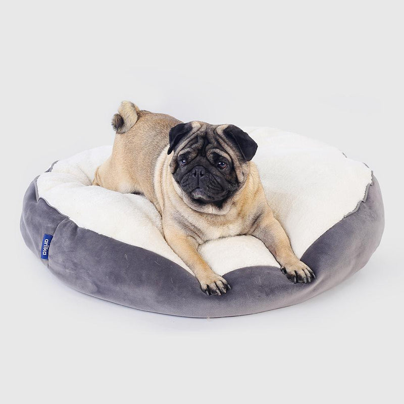Daisy Pet Bed