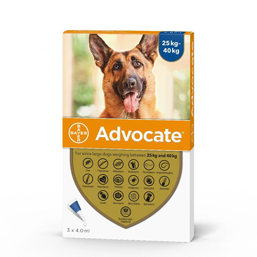 Advocate For Extra-Large Dogs 25kg-40kg - 1 Pipette