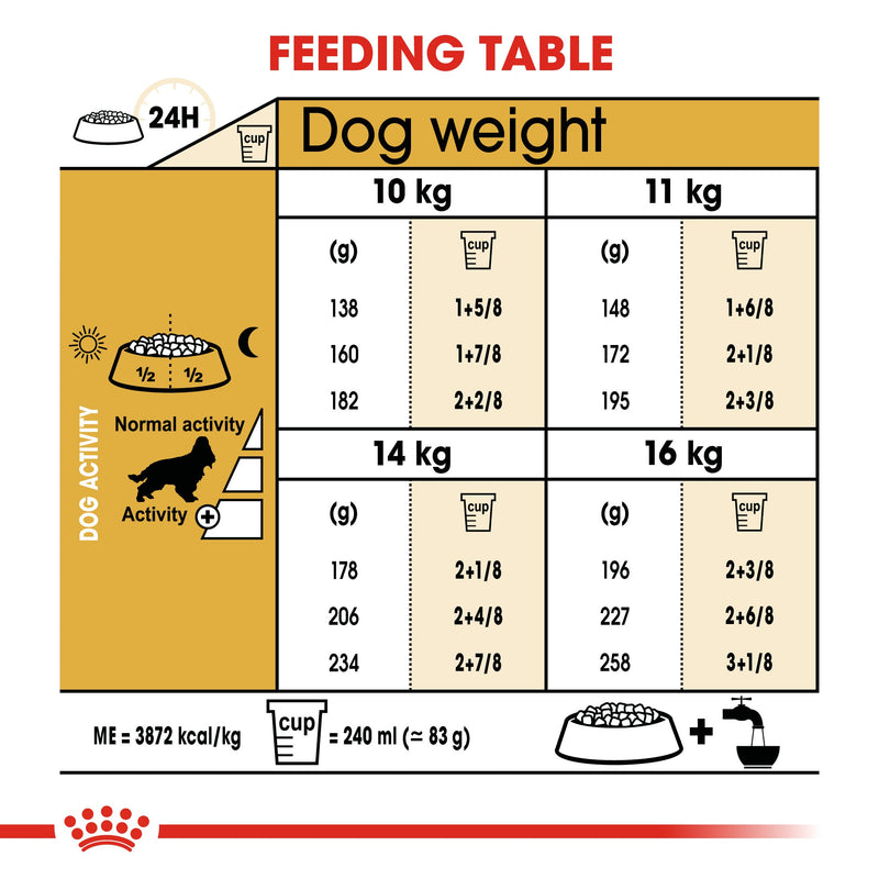 Royal Canin Cocker Adult (3 KG) - Dry food for adult Cocker dogs over 12 months - Amin Pet Shop