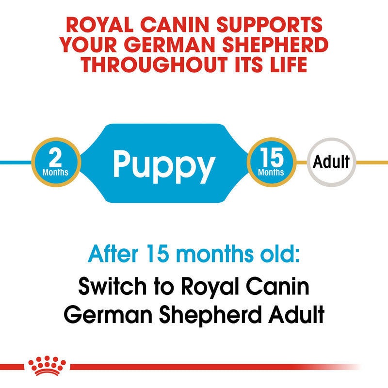 Royal Canin German Shepherd Puppy (16 KG) - Dry food for puppies up to 15 months - Amin Pet Shop